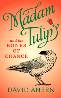 'Madam Tulip and the Bones of Chance' by David Ahern